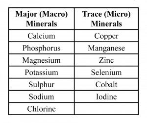 Mineral table