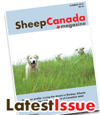 Sheep Canada magazine: Latest Issue