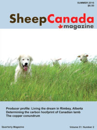 Sheep Canada: Summer 2016