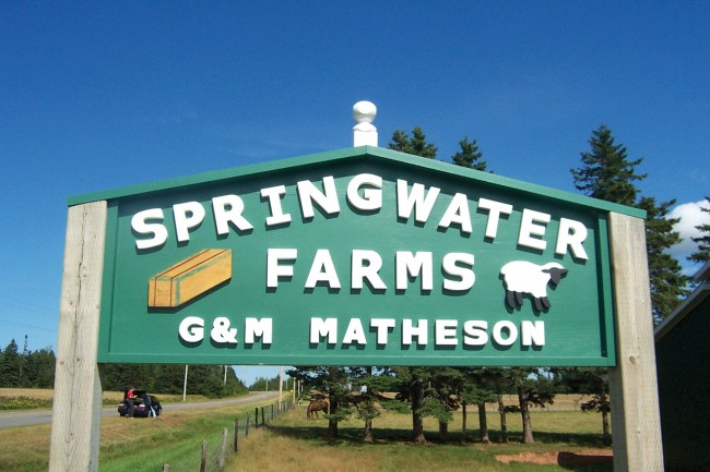 The Springwater Farm sign lets hay or sheep buyers know they've come to the right place. Photo by Melaney Matheson.