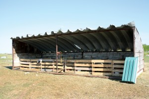 During lambing, the Nikkels had two days of wind and rain, so Rod moved calf shelters into the pasture and set up claiming pens inside.