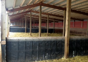 Dividers between pens are removable for easy barn cleaning. Snow fence at the back of the barn protects siding from debris that blows out of the bale processor when spreading straw.