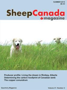 Sheep Canada: Summer 2016