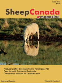Sheep Canada Fall 2017