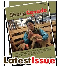 Sheep Canada magazine: Latest Issue