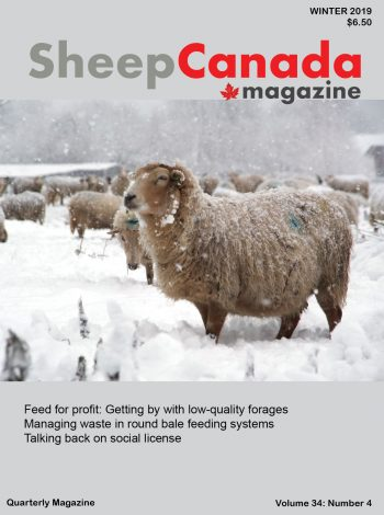 Sheep Canada - Winter 2020