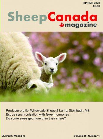 Sheep Canada - Spring 2020