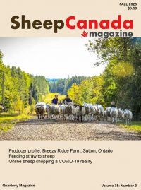 Sheep Canada magazine 2020 Fall Cover