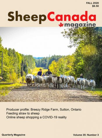 Sheep Canada magazine 2020 Fall Cover