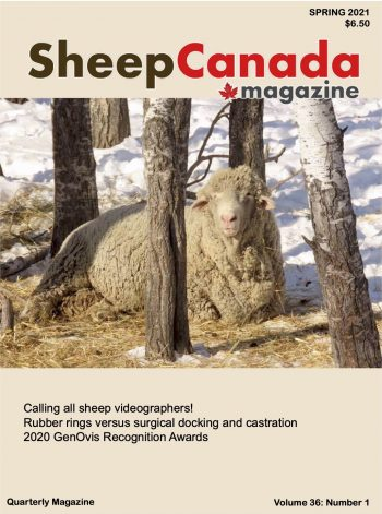 Sheep Canada magazine 2021 Spring Cover